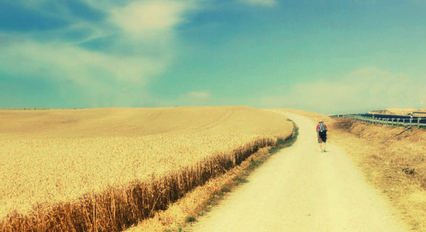 How Love is Like a Handbag and Why You Should Dump the Contents of it on the Table- Notes from the Camino